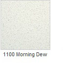 1100 Morning Dew